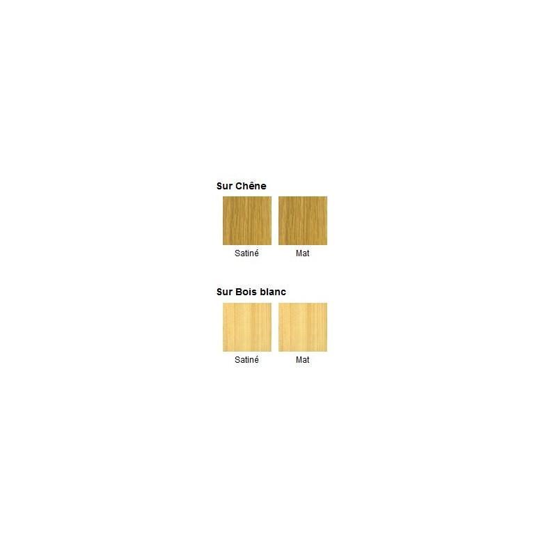 vitrificateur parquets escaliers blanchon mat 5 l manubricole. Black Bedroom Furniture Sets. Home Design Ideas